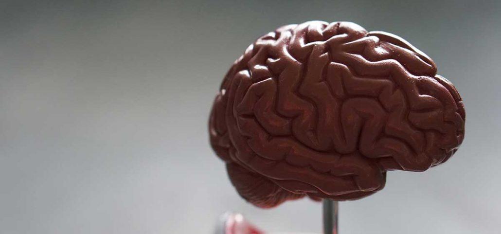activity به عنوان مغز نرم افزار