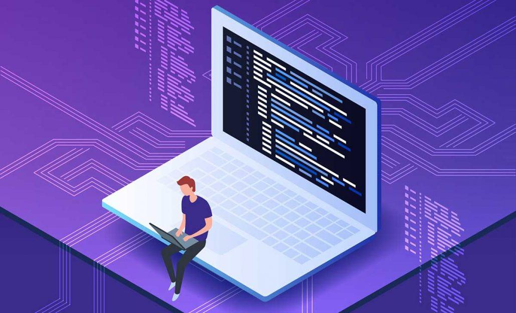 برنامه نویس حرفه ای چکار می کند؟